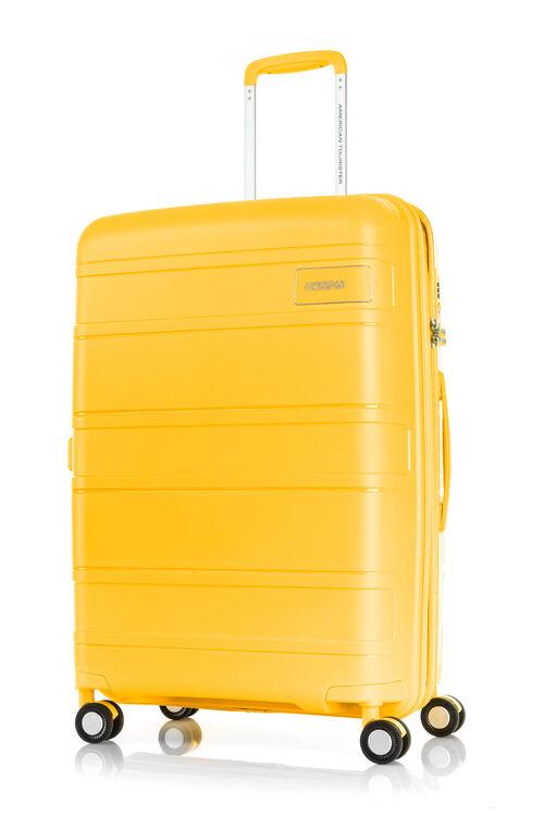LITEVLO LITEVLO SPINNER 69/25 EXP TSA  hi-res   American Tourister